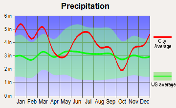 Warwick, Georgia average precipitation