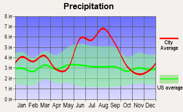 Woodbine, Georgia average precipitation
