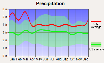 Hoschton, Georgia average precipitation