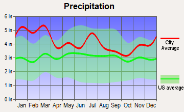 Jonesboro, Georgia average precipitation