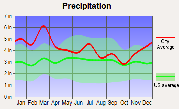 Kingston, Georgia average precipitation