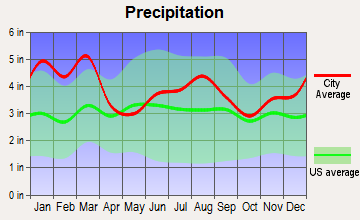 Midway-Hardwick, Georgia average precipitation