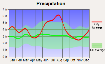 Odum, Georgia average precipitation