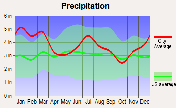 Perry, Georgia average precipitation