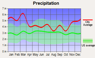 Valley, Georgia average precipitation