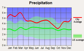 Yorkville, Georgia average precipitation