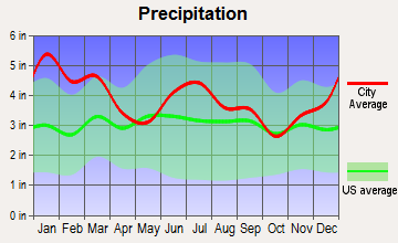Finleyson, Georgia average precipitation