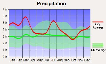 The Rock-Yatesville, Georgia average precipitation