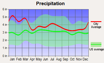 Washington-Metasville, Georgia average precipitation
