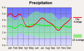 Centerville, Georgia average precipitation