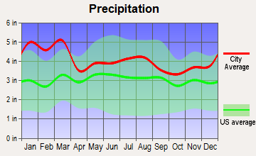 Comer, Georgia average precipitation