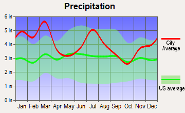 Culloden, Georgia average precipitation