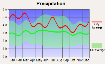 Fairburn, Georgia average precipitation