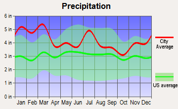 Fayetteville, Georgia average precipitation