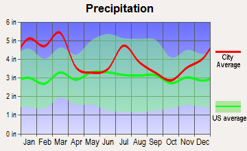 Forsyth, Georgia average precipitation