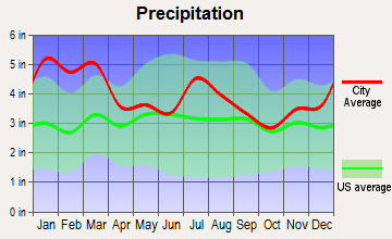 Greensboro, Georgia average precipitation