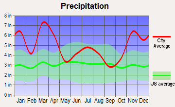 Kapaau, Hawaii average precipitation