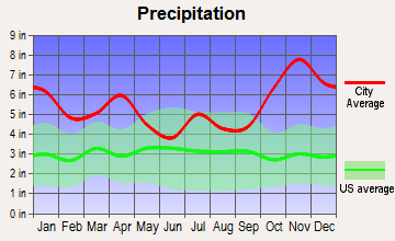 Wailua Homesteads, Hawaii average precipitation