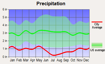 Castleford, Idaho average precipitation
