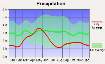 Grangeville, Idaho average precipitation