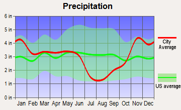 Elk City, Idaho average precipitation