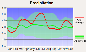 New Athens, Illinois average precipitation