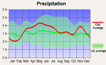 Pocahontas, Illinois average precipitation