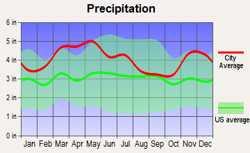 Rosiclare, Illinois average precipitation