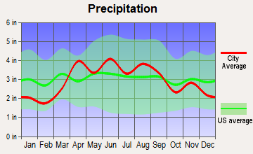 Round Lake Beach, Illinois average precipitation