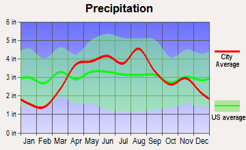 Schaumburg, Illinois average precipitation