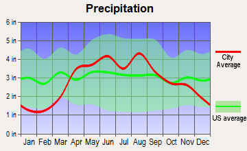 Steward, Illinois average precipitation