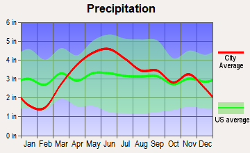 Sun River Terrace, Illinois average precipitation