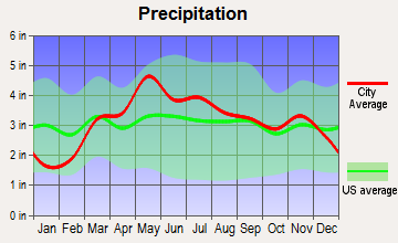 Virginia, Illinois average precipitation