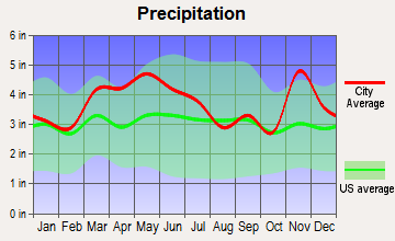 Whiteash, Illinois average precipitation