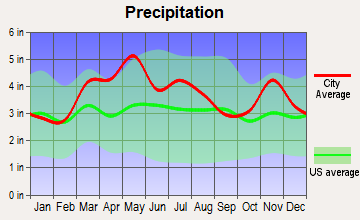 Allendale, Illinois average precipitation