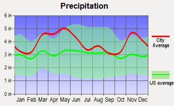 Alto Pass, Illinois average precipitation