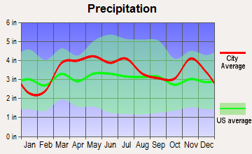Baldwin, Illinois average precipitation