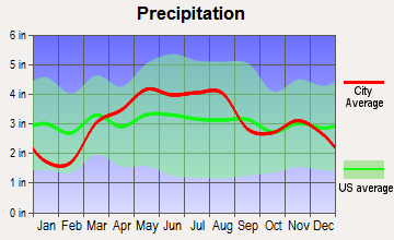 Bellflower, Illinois average precipitation