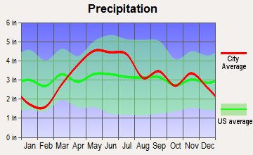 Bourbonnais, Illinois average precipitation