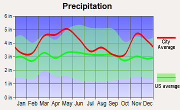 Buncombe, Illinois average precipitation