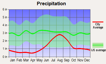 Koyukuk, Alaska average precipitation