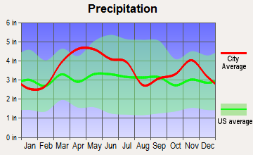 Central City, Illinois average precipitation