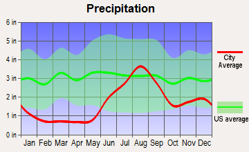 Mountain Village, Alaska average precipitation