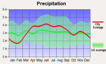 Hometown, Illinois average precipitation