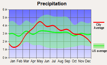 Industry, Illinois average precipitation