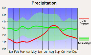 New Stuyahok, Alaska average precipitation