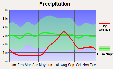 Newtok, Alaska average precipitation