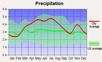 Center Point, Indiana average precipitation