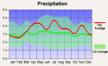 Dugger, Indiana average precipitation