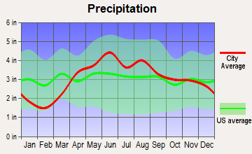Leesburg, Indiana average precipitation